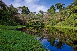Grand Tour Brasile - Amazzonia
