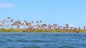 Tour Ande Amazzonia e Caraibi - Guajira la rotta delle emozioni