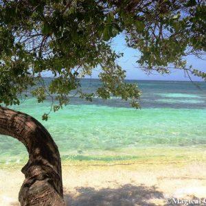 Tour Aroma di Caffe e Caraibi - Islas del Rosario