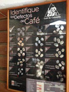 Tour Aroma di Caffe e Caraibi - Triangolo del Caffe la rotta delle emozioni