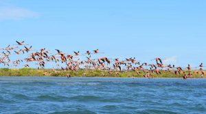 Tour Offerta Rotta delle Emozioni Colombiane Guajira