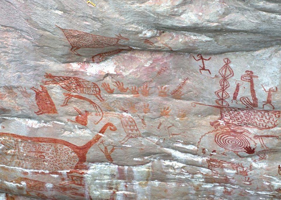 pitture rupestri colombia la rotta delle emozioni
