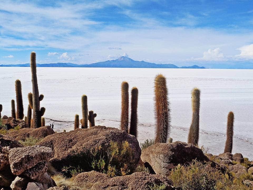 estensione bolivia-the-salar de uyuni - web